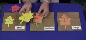 Make leaf size sorting bags for a kid's fall acitivity