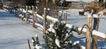 How to Build a Rustic Split Rail Fence