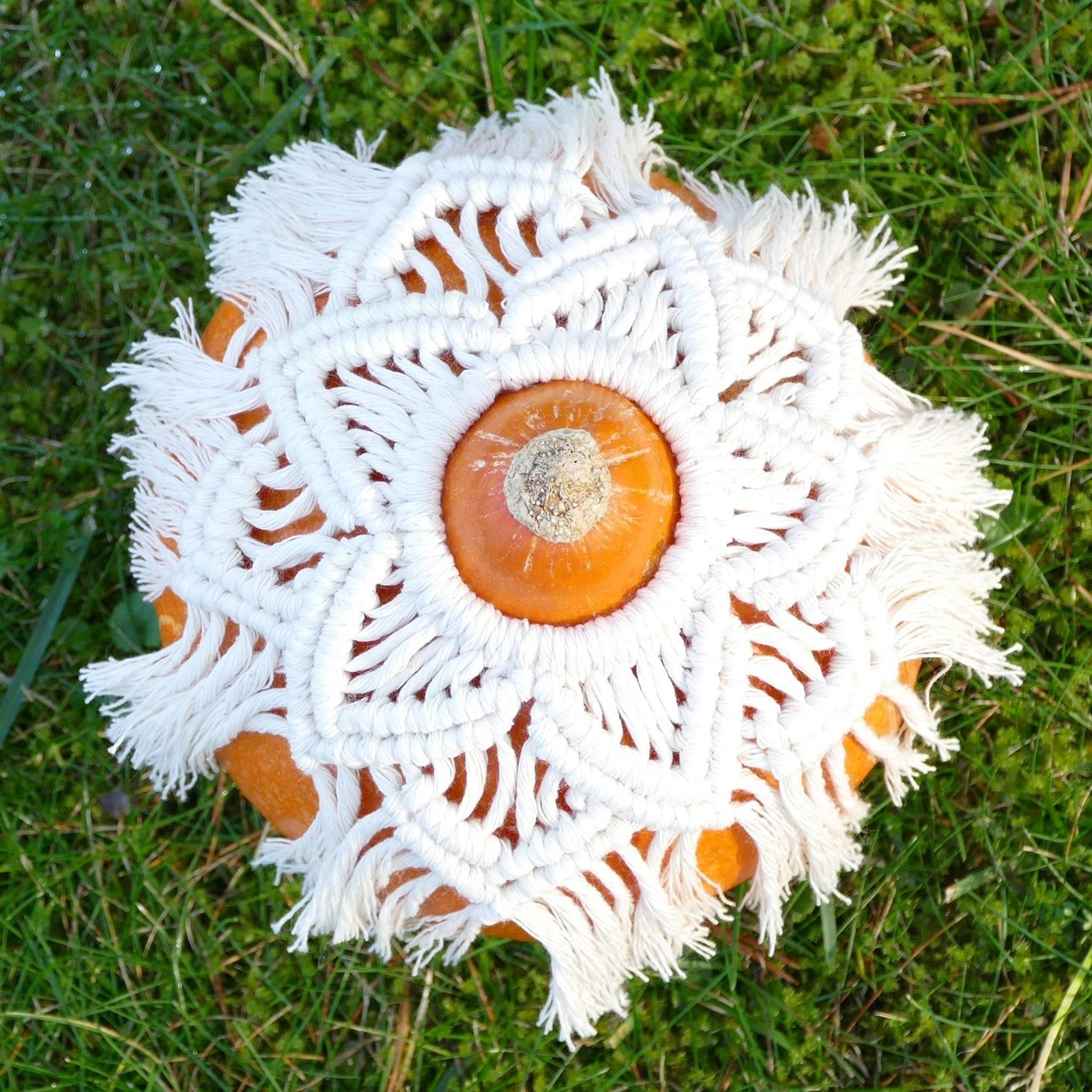 Macrame Pumpkin Cover