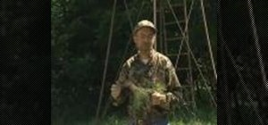 Use food plots when hunting