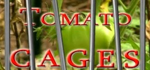 Use tomato cages in your garden