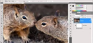 Use Smart Filters in Adobe Photoshop CS5