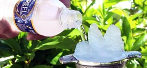 Supercool Science Trick: How to Turn Water into Ice on