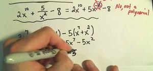 Recognize polynomials in algebra