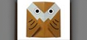 Origami an owl Japanese style