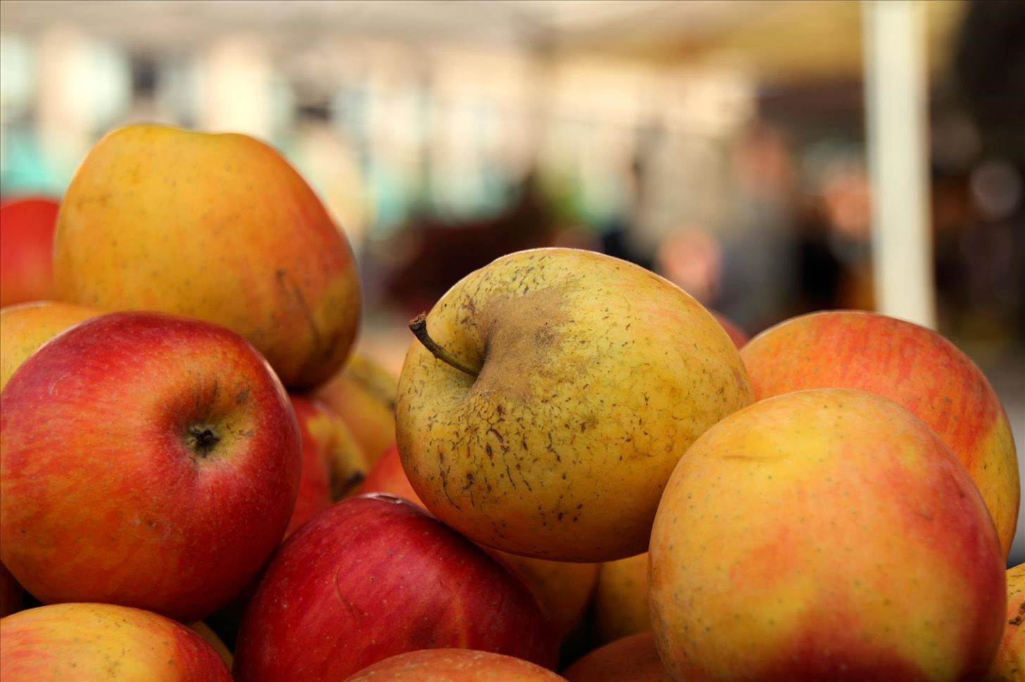 Divide & Conquer: How to Keep Apples, Bananas, Tomatoes, & Other Fruits Fresher Longer