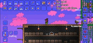 Get the Wizard's Hat item in Terraria