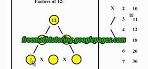 Make a factor tree for the numbers 12 and 5