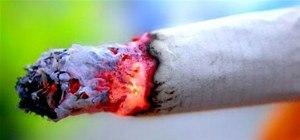 Make Prison Cigarettes with Spinach