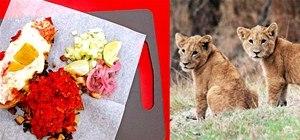 Tucson Restaurant Serves African Lion Tacos for $8.75 a Pop