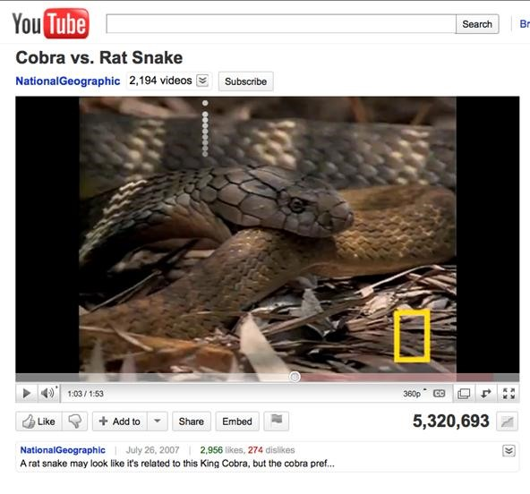 How to Play the Snake Game Online (YouTube, Gmail & Facebook)