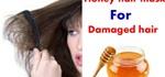 Homemade Honey Hair Mask for Damaged Hair
