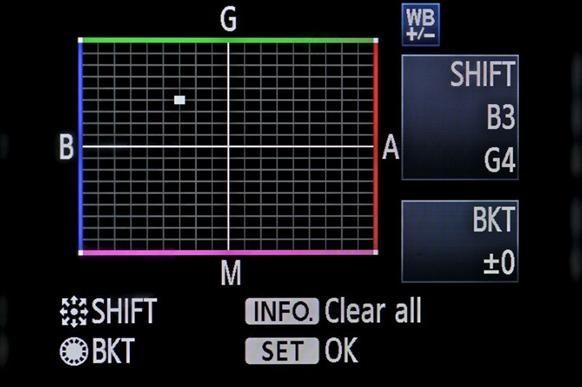 Color Correct in Camera w/ Shane Hurlbut, ASC