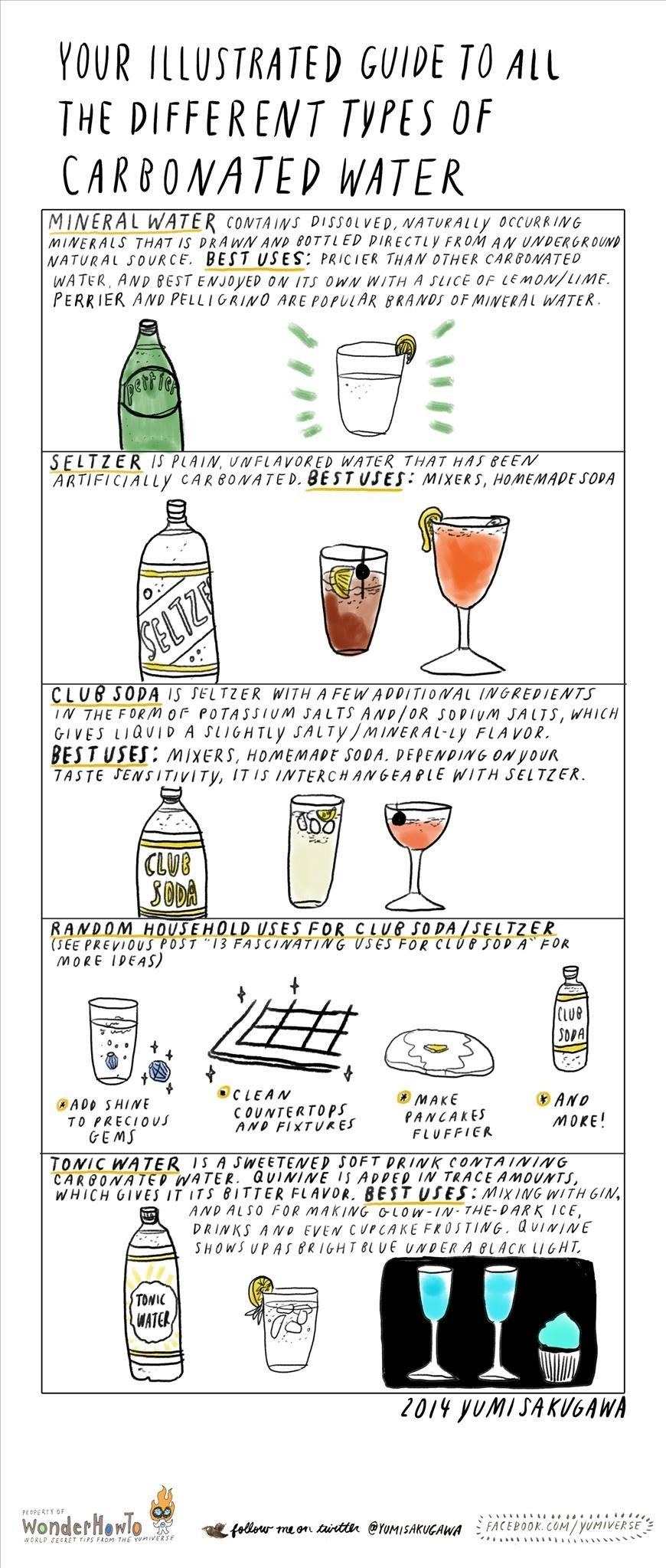 Your Illustrated Guide to Different Types of Carbonated Water